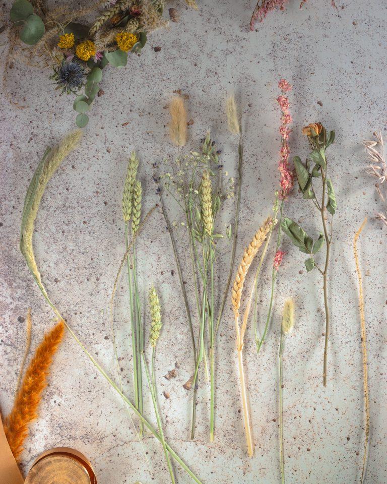 Botanique Floral Workshop